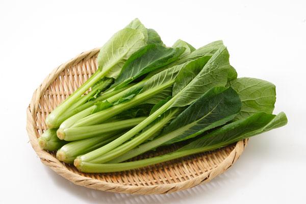 小松菜が免疫力を高めてくれる?小松菜の栄養素とは