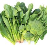 緑の濃い野菜