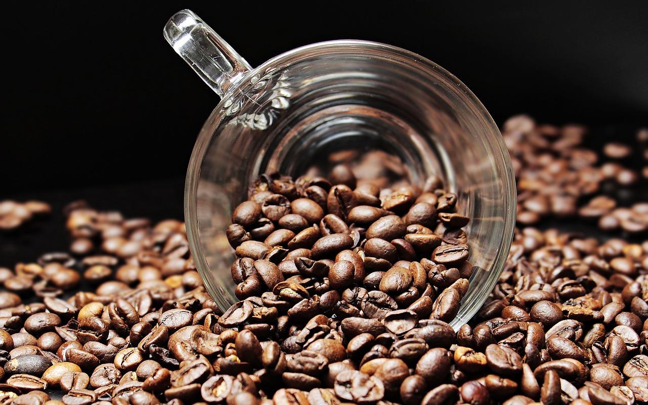 コーヒーで脂肪燃焼 二日酔い予防も?意外な健康効果とは