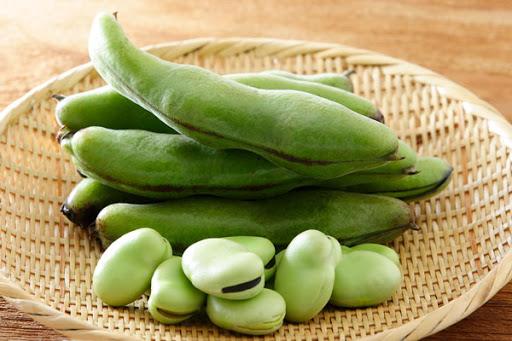 そら豆は脳にも良い?春が旬そら豆の栄養とは