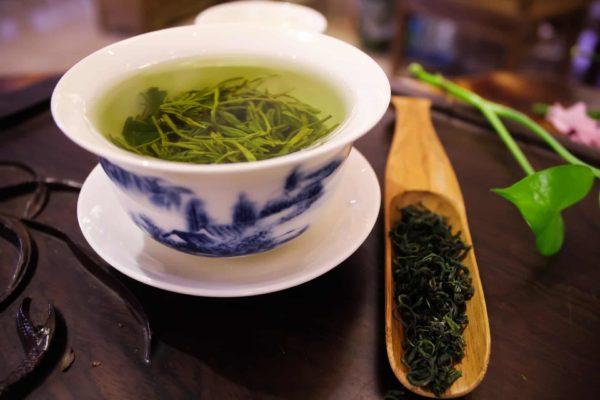 コロナ対策と免疫力向上に役立つ緑茶のエピガロカテキンガレートとは