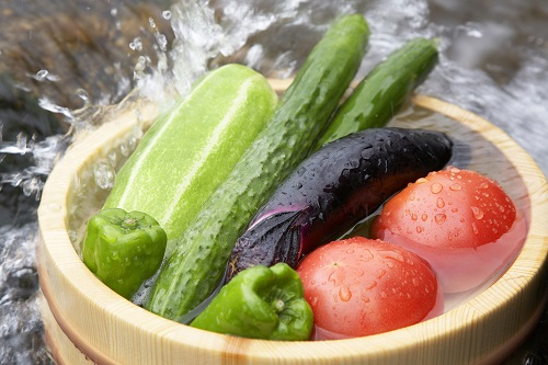 夏野菜で熱中症対策!旬の野菜は体に必要な栄養素が最も豊富