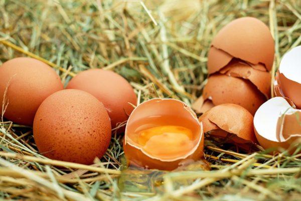 卵は記憶力アップや美肌にも良い?卵の健康効果とスキンケア方法