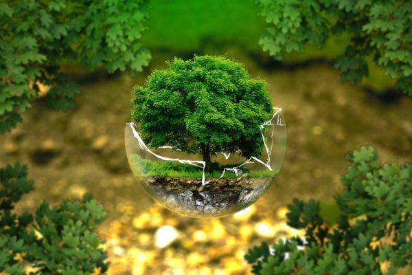 「サスティナブルな生活」地球環境を守るために私たちができること